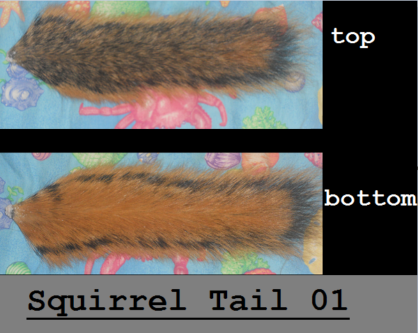 Squirrel tail 01 hickory by hyenawolf123 on deviantart for Skin it fish skinner