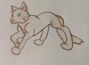 Brown Cat by XxPaperShredderxX
