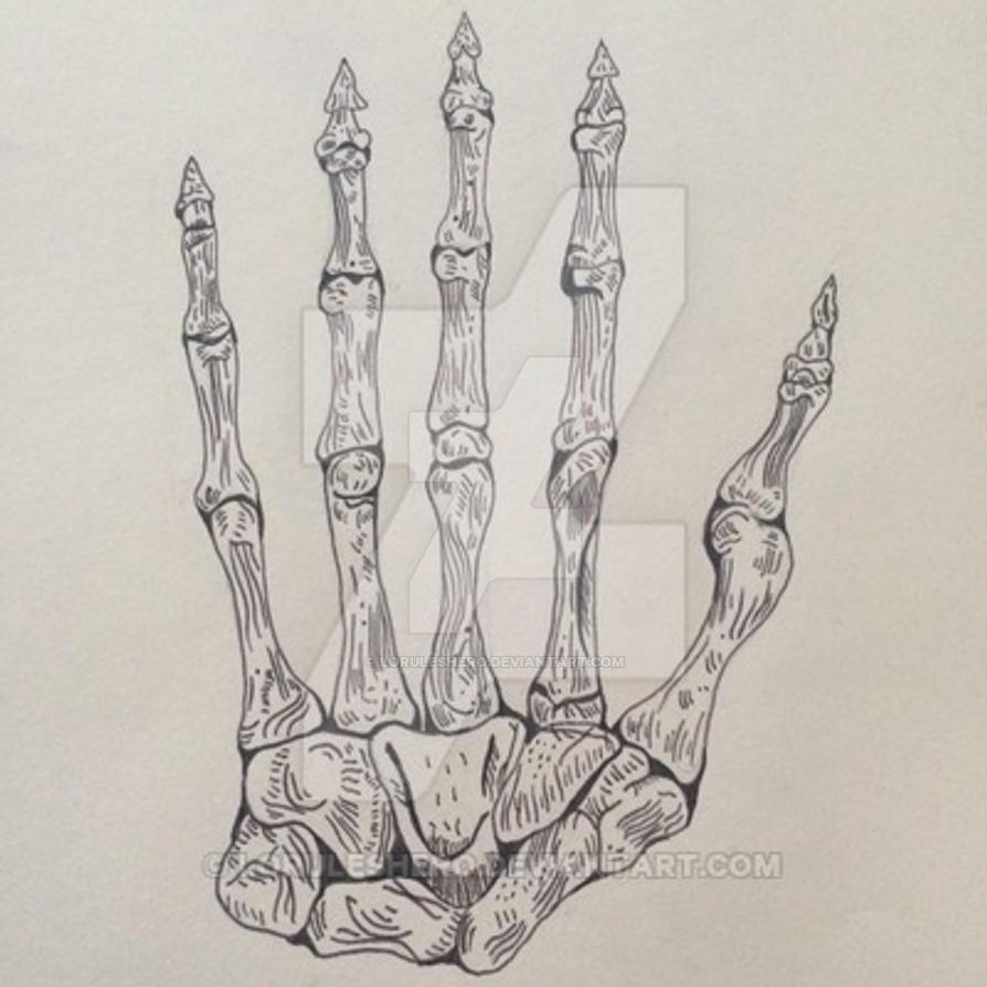 Hand by loruleshero