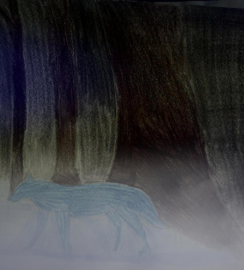 Night Forest by Master-Otkau-Dark