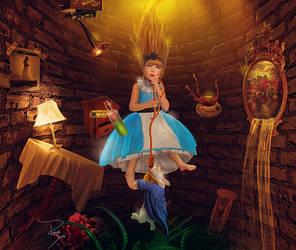 New Visions of Wonderland
