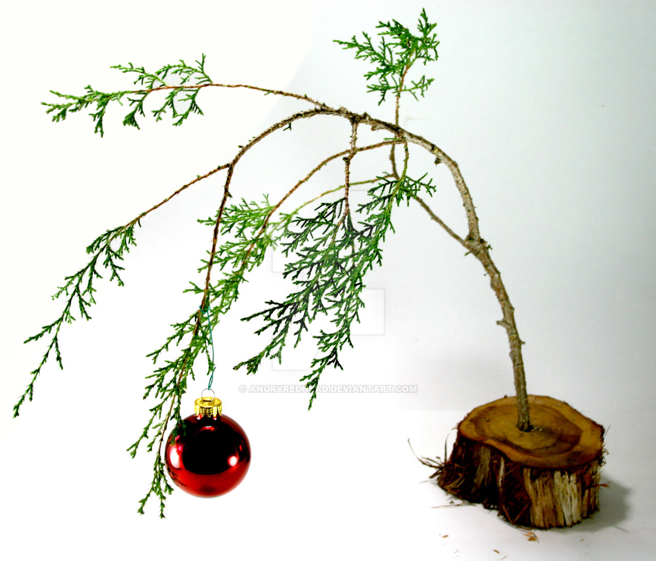 charlie_brown_christmas_tree_by_angryred