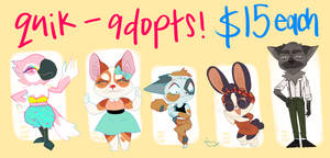 quik adopts - $15 each - special offer !