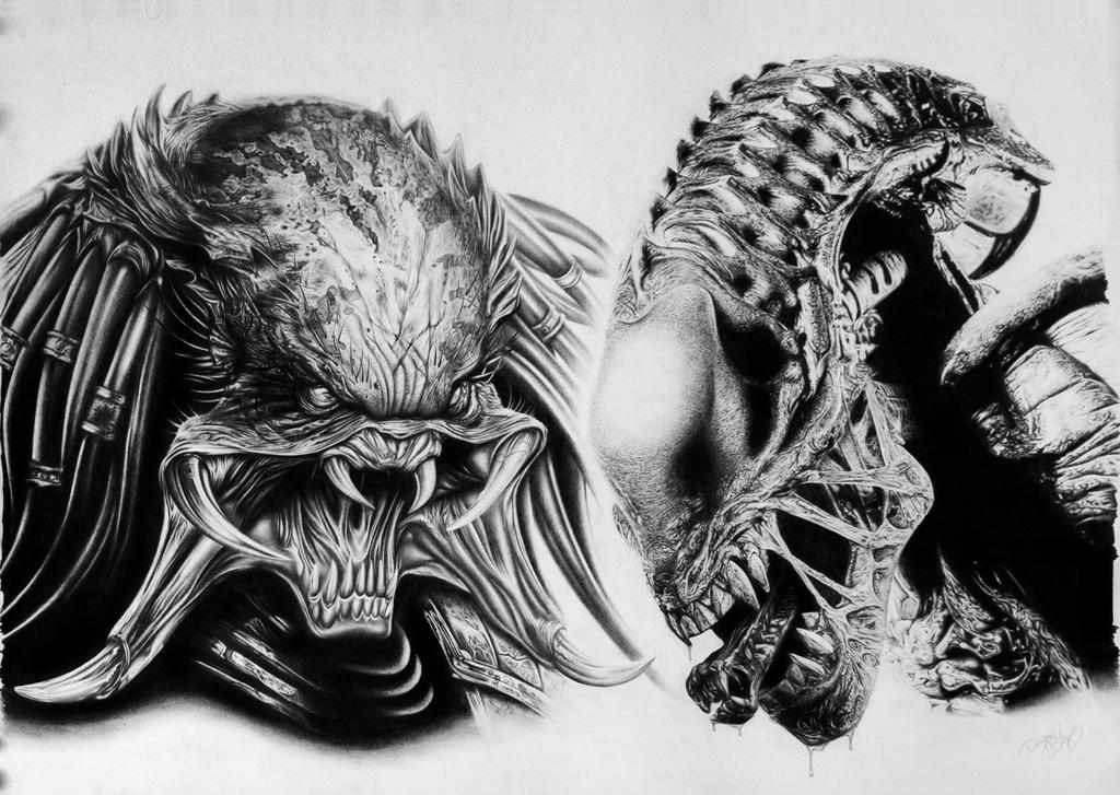 Alien vs predator by blazs91