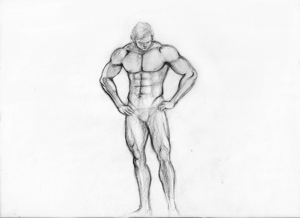 Male anatomy drawing by SiddharthBist on DeviantArt