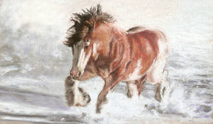 17. Clydesdale horse winter