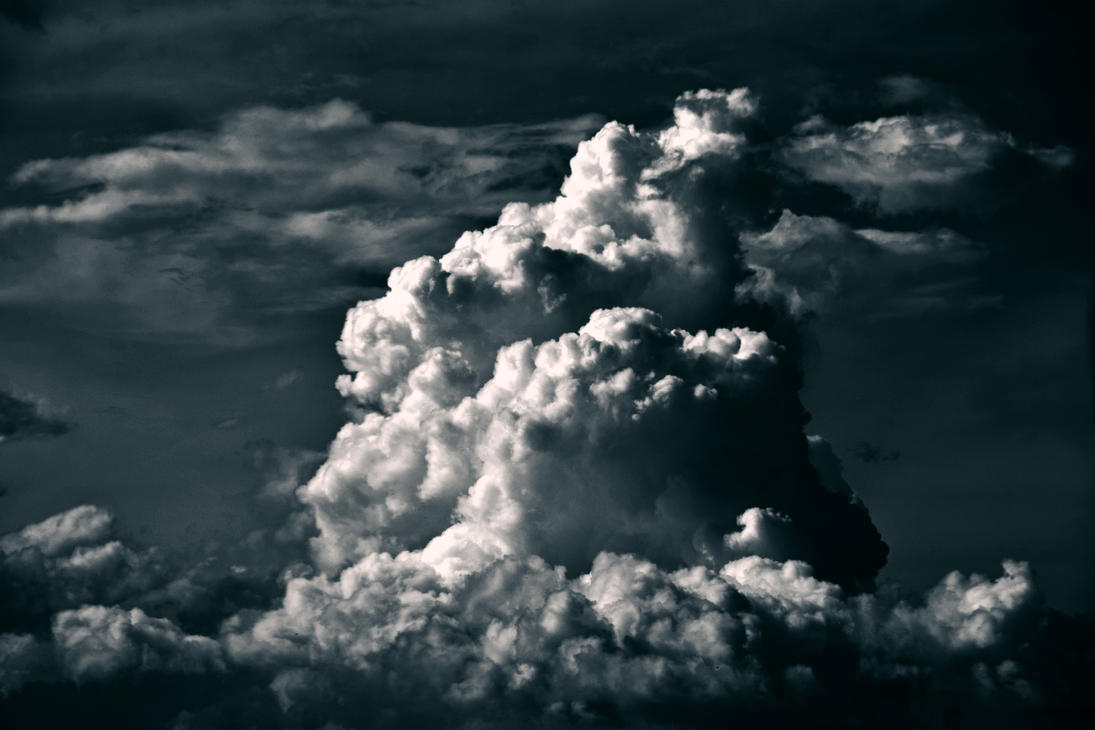 Tropical Thunder by 62dingos