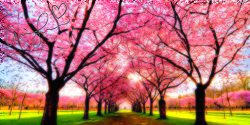 Tumblr Pink Headers By Senagunes54 On Deviantart