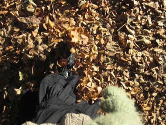 Walking in autumn leaves by laziestgirlintown