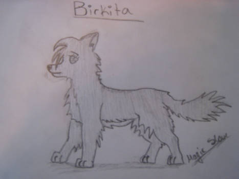 Wolfpupart to Birkita