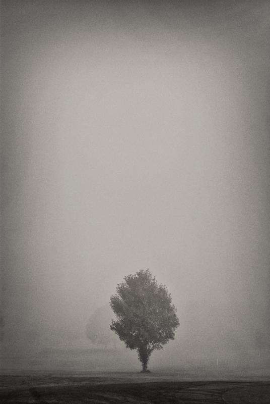 Silence by BennyBrand