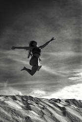 Flying Home by BennyBrand
