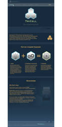 web design by RainmanQ