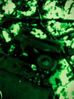 Img 20180127 114542-1 by Scrap-Rabbit-X