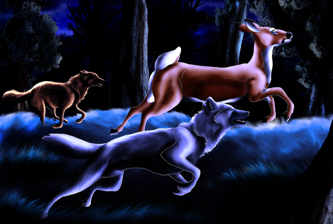 CM - The Hunt by AzureHowlShilach