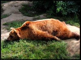 Comfy sleeping pose by AzureHowlShilach