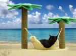 Nisha's Vacation