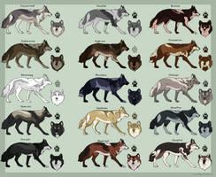 Semi-natural wolf adoptable (CLOSED)