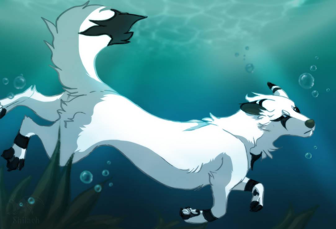 Patreon Reward - Swimming Ruuza