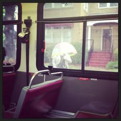 Bus View - Umbrella