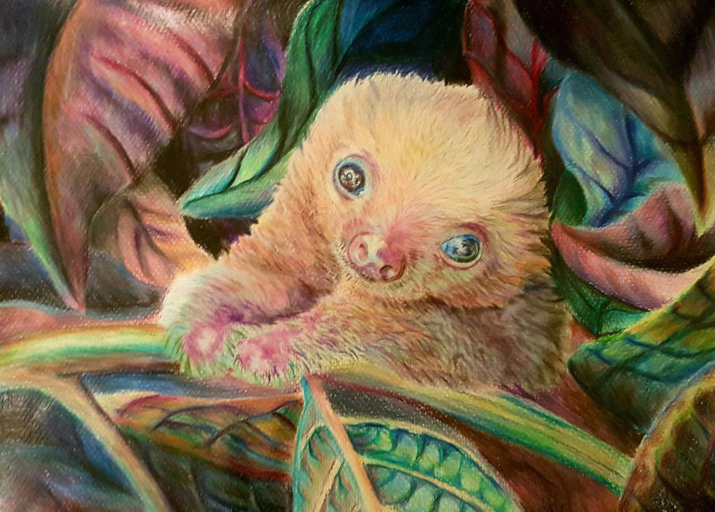Baby Sloth by NatPratt