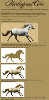 Recoloring Horses - Part Two