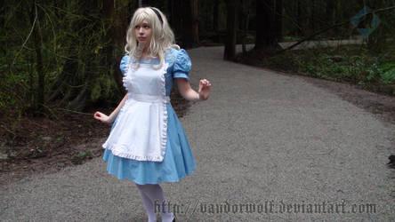 Alice in Wonderland: Which Way by VandorWolf