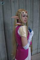 Zelda: A Hero's Return by VandorWolf