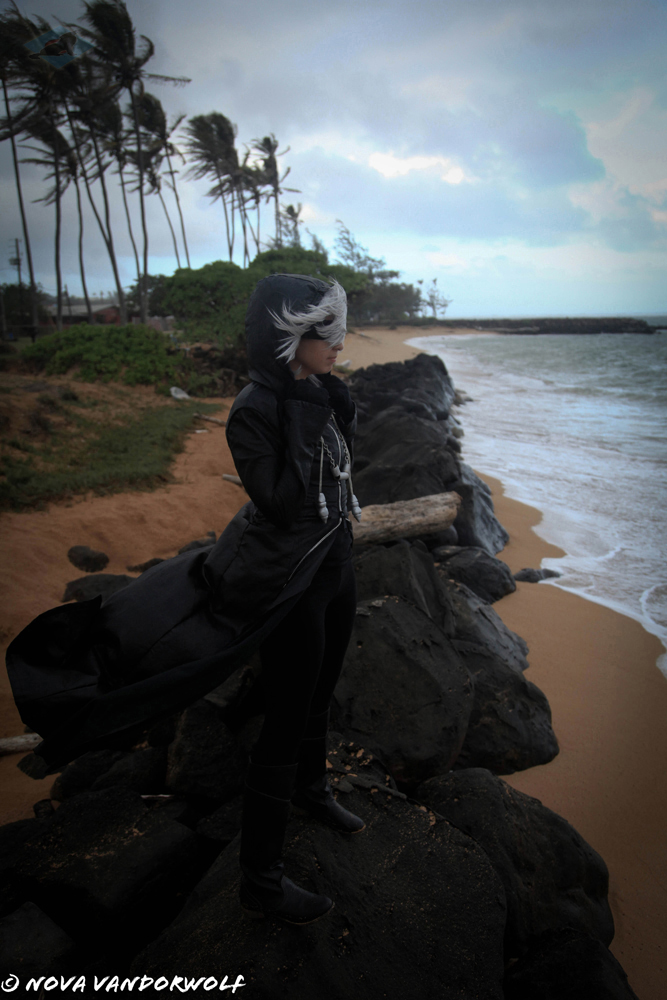 Kingdom Hearts- Riku A Storm is Coming by VandorWolf