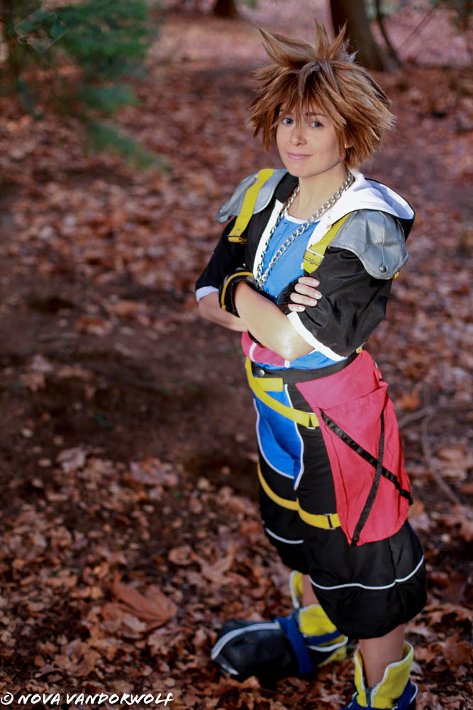 Kingdom Hearts: Sora the Pure of Heart by VandorWolf