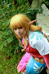 Legend of Zelda Skyward Sword: Skyloft Zelda