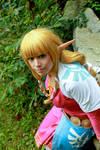 Legend of Zelda Skyward Sword: Skyloft Zelda