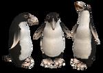 Spore Penguin
