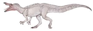 Suchomimus Tenerinsis