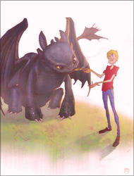 What not to train a Dragon by CoranKizerStone
