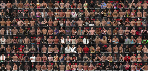 WWE17 Roster Collage by yoink17