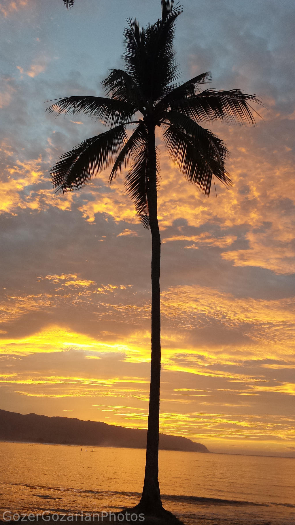 haleiwa chat Haleiwa tourism: tripadvisor has 35,772 reviews of haleiwa hotels, attractions, and restaurants making it your best haleiwa resource.