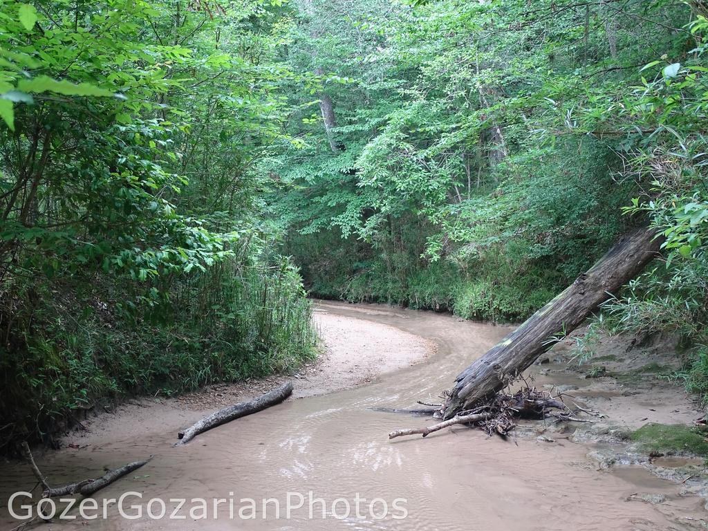 Clark Creek 04787 by GozerGozarian