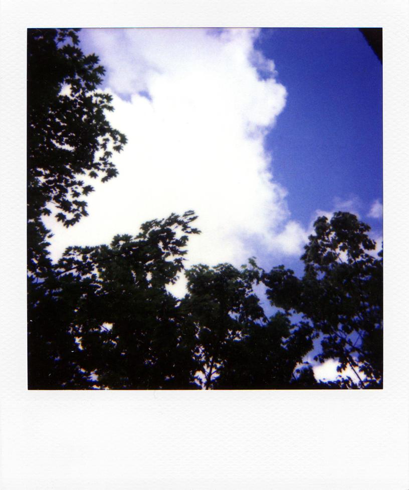 DeviantArt More Like Polaroid template Back gmtb by viralstock – Polaroid Template