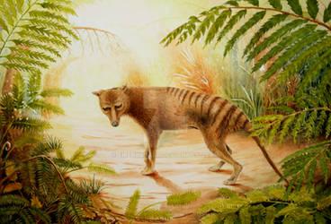 Betrayed -Tasmanian Tiger