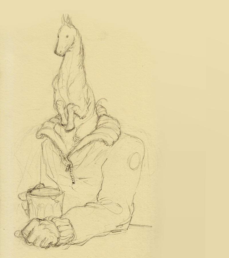 Horse-sketch2 by croovman