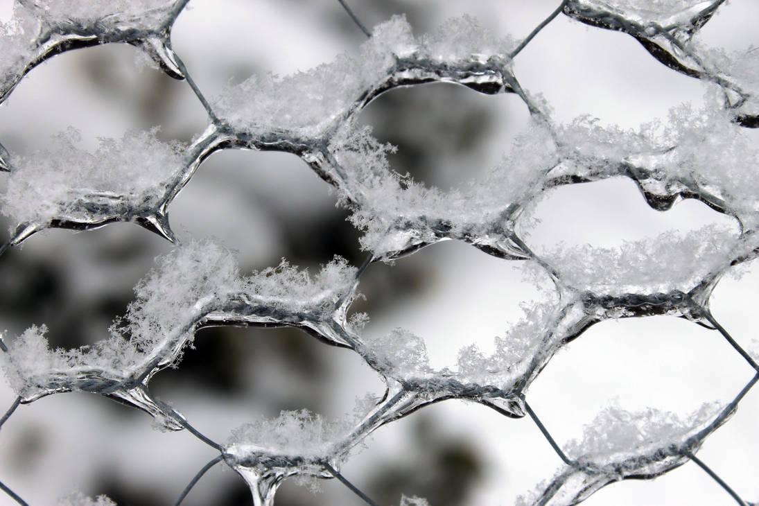 Icy Twist