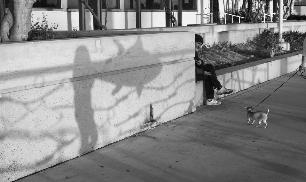 Boardwalk Scene by myoung4828