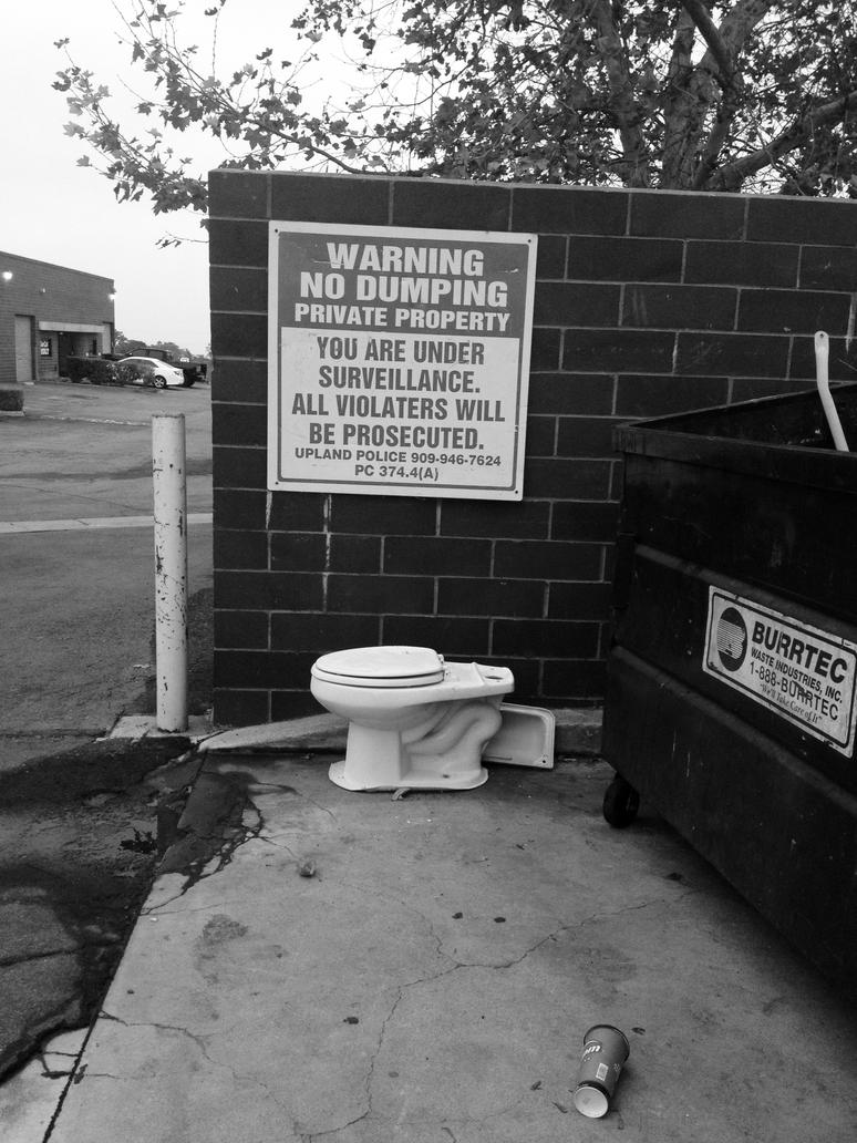 No Dumping by myoung4828