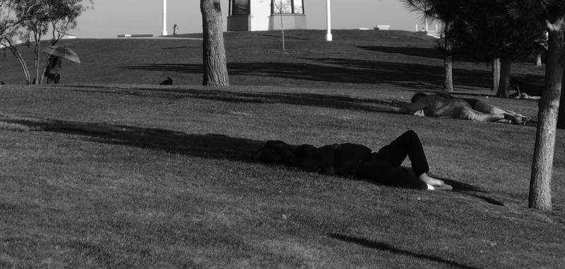 Lawn Scene by myoung4828