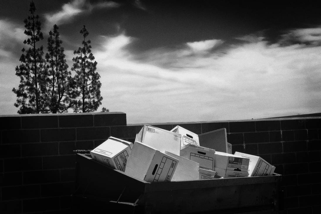 Boxes In The Trash Bin by myoung4828