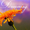 dreaming of flowers by ceciliay
