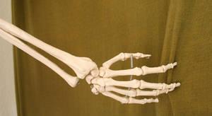 Skeleton Hand Stock 1