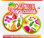 +RECURSOS Y MAS: Vectores Tropicales