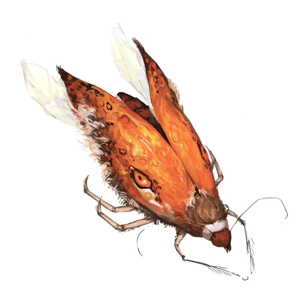 Fox Beetle by vsurprise